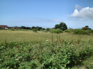 Malthouse Meadow, Sompting